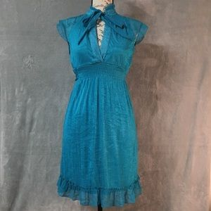 The Hanger Blue Ruffled Fit and Flare Dress Med